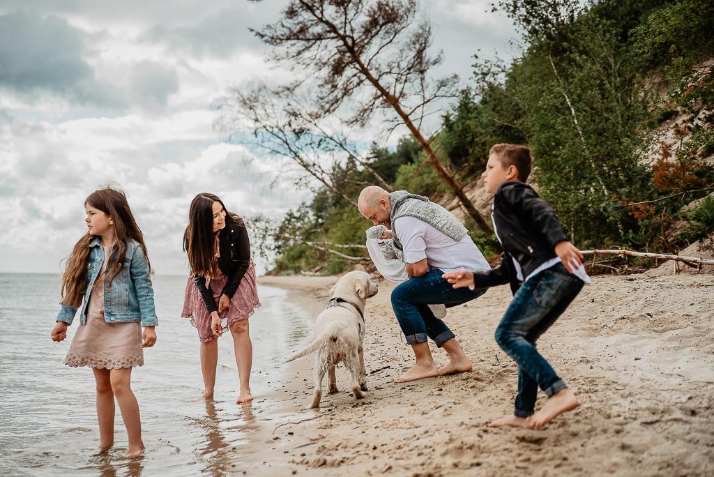 labrador biały bawi się z rodziną na sesji nad morzem Gdynia