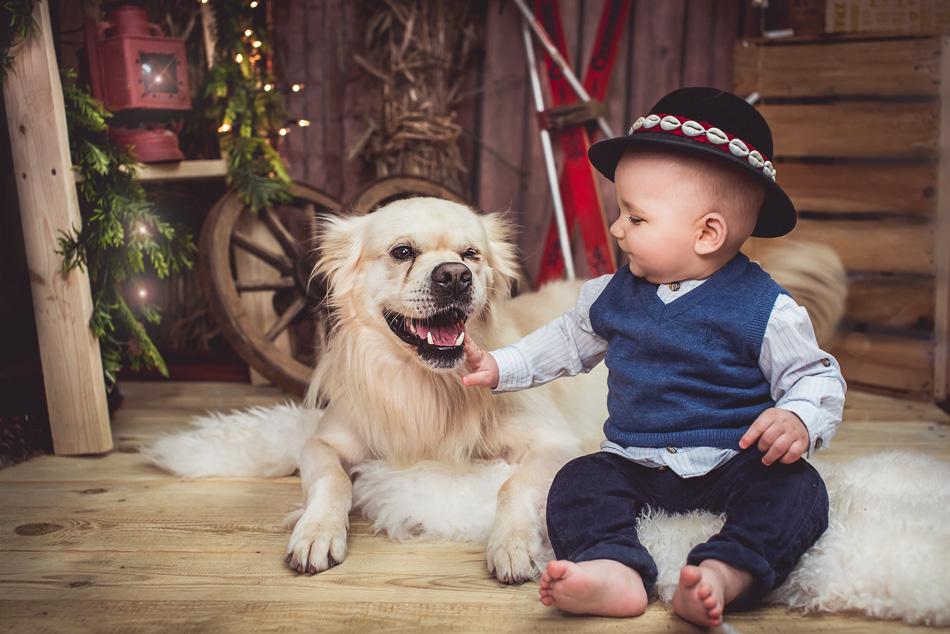 sesja z psem mini na święta mały góral