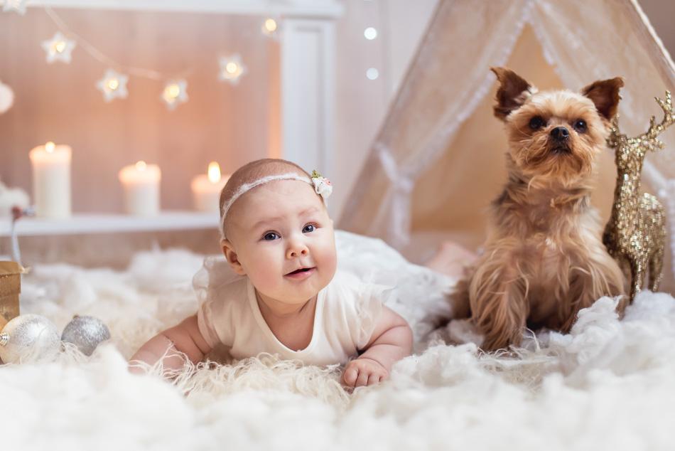 mini sesja boże narodzenie święta dziecko z pieskiem york kominek w tle