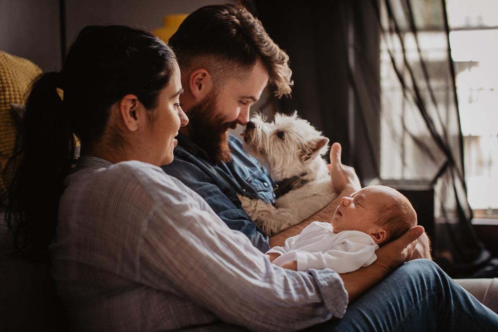 ujęcia rodzinne podczas sesjo noworodkowej w której uczestniczy pies