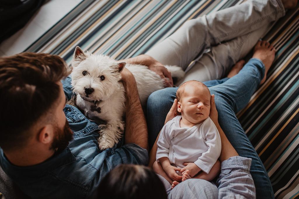 pies też człowiek bardzo mile widziany na sesji fotograficznej Trójmiasto