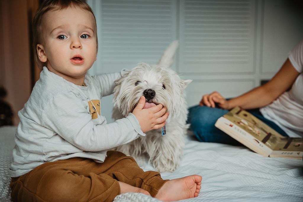 chłopiec karmi psa